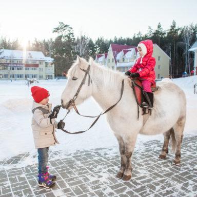 Прогулки на лошадях для детей в Баден-Баден